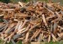 Un piccolo alleggerimento delle restrizioni per il Coronavirus. Si potrà tagliare legna anche per auto consumo, ma solo pochissimi lo potranno fare perchè…..