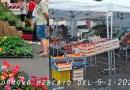 Fornovo Mercato di Martedì 5-1-2021 Alimentare e Fiori-Piante