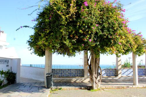 Lisbona in tre giorni - Miradouro