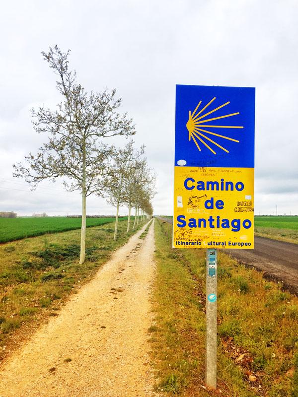 Le tappe del Cammino di Santiago - Le Mesetas