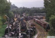 Skansen-środek lata-na powiększeniu fotografii widać lokomotywę OKl27-41-obecnie stoi ona na cokole. Fot. Miłosz P.Mazurek