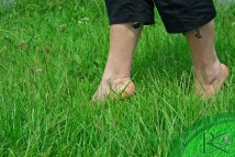 Feet Walking Barefoot Grass