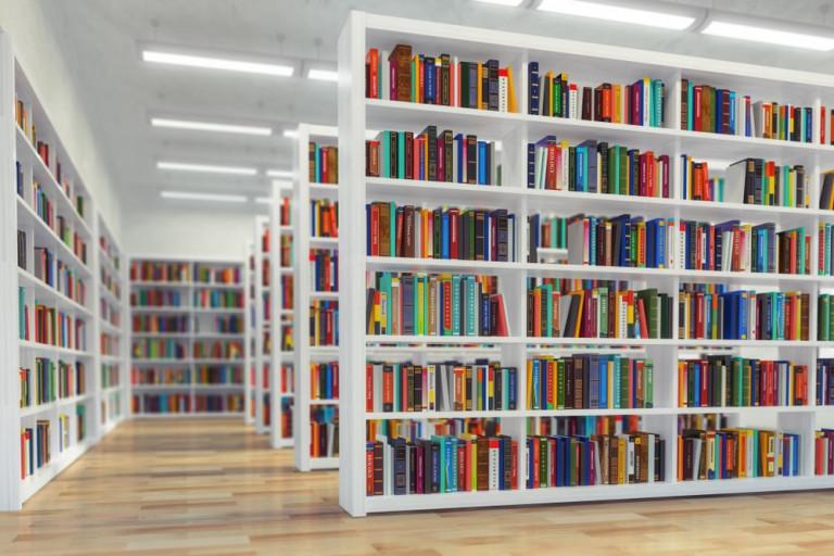 La-biblioteca-es-inclusion-social-e-igualdad-de-oportunidades