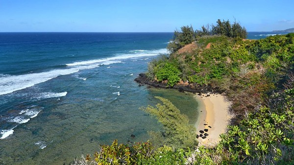 Sealodge Offers Secluded Kauai Beach - Vacation Rentals