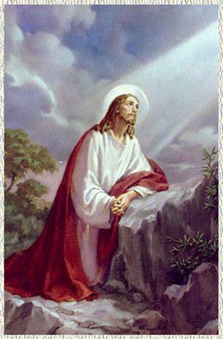Risultato immagine per gesù nell'orto degli ulivi