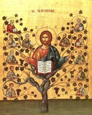 jesucristo-la-vid-y-los-sarmientos