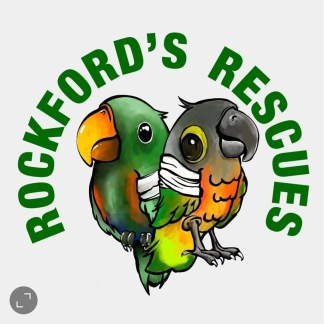 rockfords rescues parrot rescue