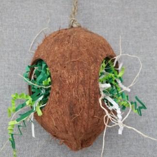 coconut parakeet toy