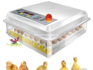 Egg Automatic Incubator
