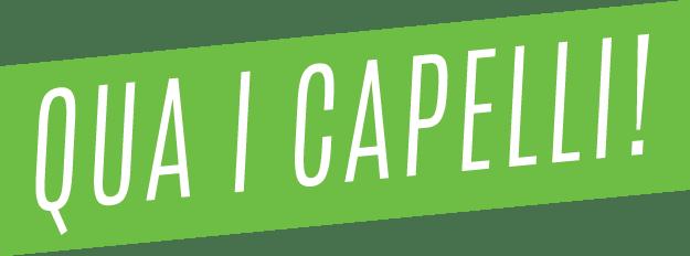 Logo Qua i Capelli! - Parrucchieri Carpi