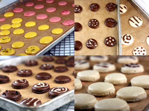Macaron Recipe! All different colors and flavors, including two-toned designs!