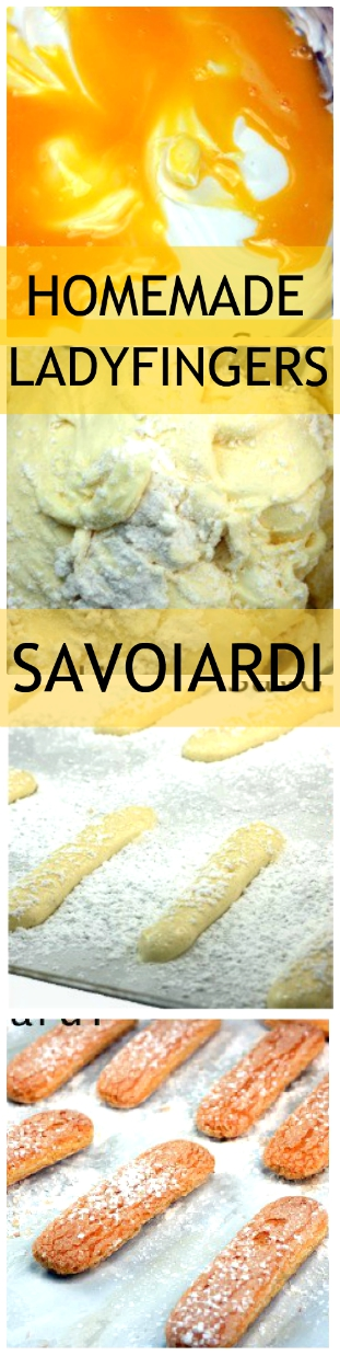 Homemade LADYFINGERS (Savoiardi! Easy and so worth it! The crunchy kind that you use for tiramisu and trifles, or just to dip in coffee or liqueur! OR just eat them as is; great cookie! #ladyfingers #savoiardi #tiramisu #cookie