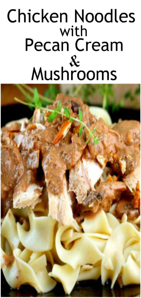 Chicken Noodles with Pecan Cream & Mushrooms. THIS does not look as amazing as it tastes!! Also, not a drop of cream in this recipe! You've got to try it!! #chickennoodles #Pecancream #pecanchicken #eggnoodles #chicken
