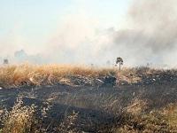 terreno incendiato