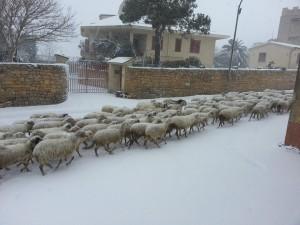 Neve a Partanna-Giuseppe_Messina3
