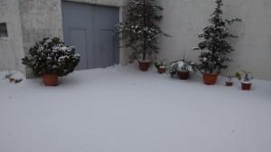 Neve a Partanna_Francesco_Cangemi3