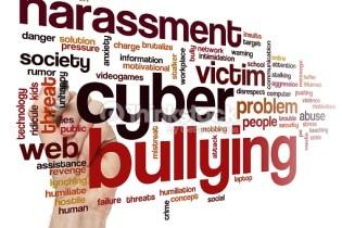 Violenza contro le donne nel web