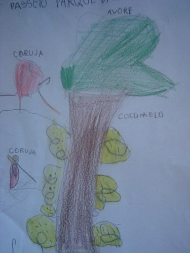 Alfabetizar e Letrar no Ensino Fundamental de Nove anos