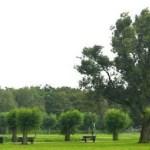 Nollebos-Westduinpark