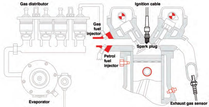 Spark Plugs Location Diagram. Parts. Wiring Diagram Images