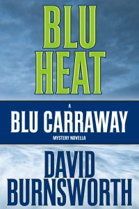 Blu Heat: A Blu Carraway Novella by David Burnsworth
