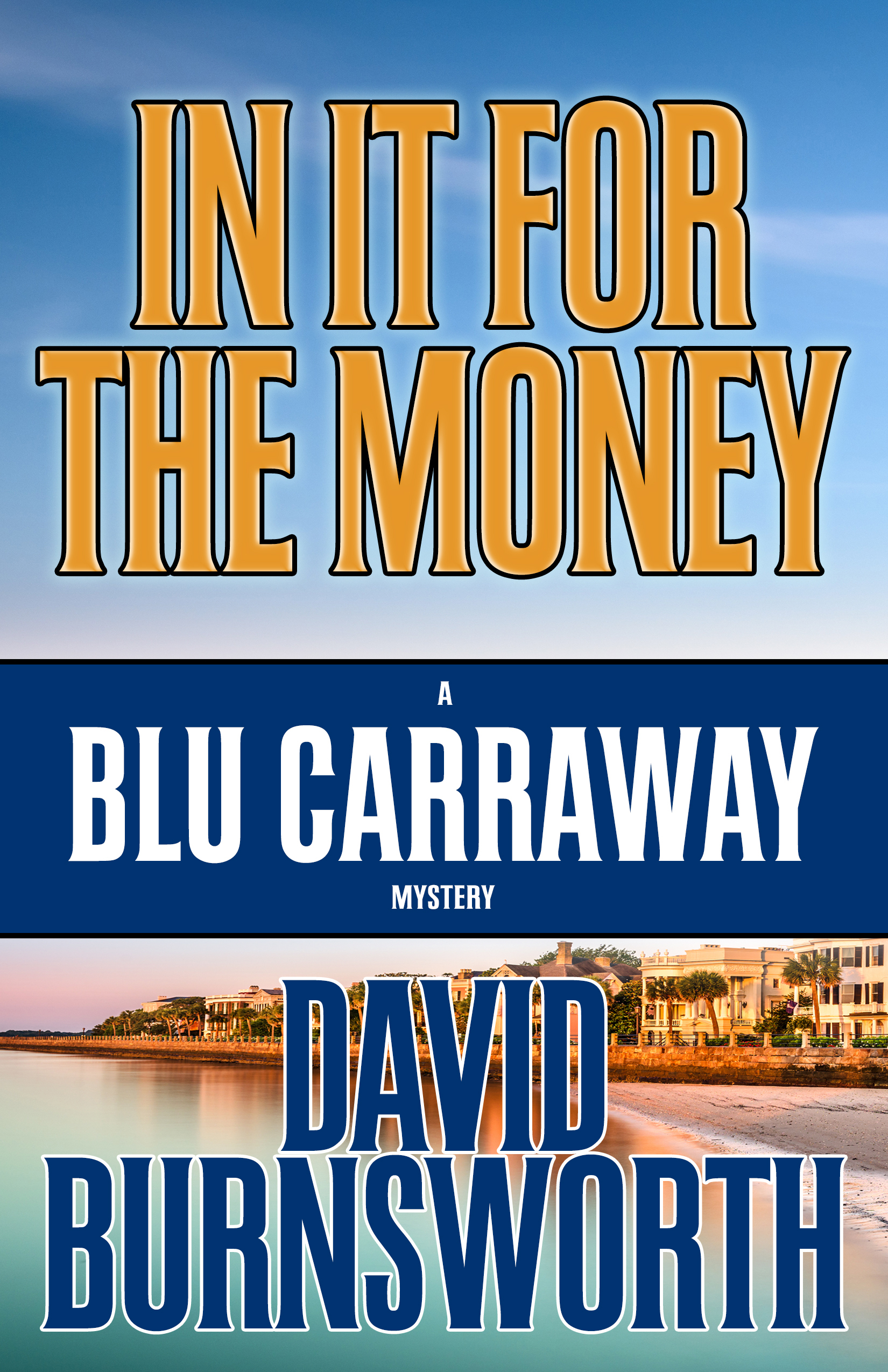 In It For The Money by David Burnsworth