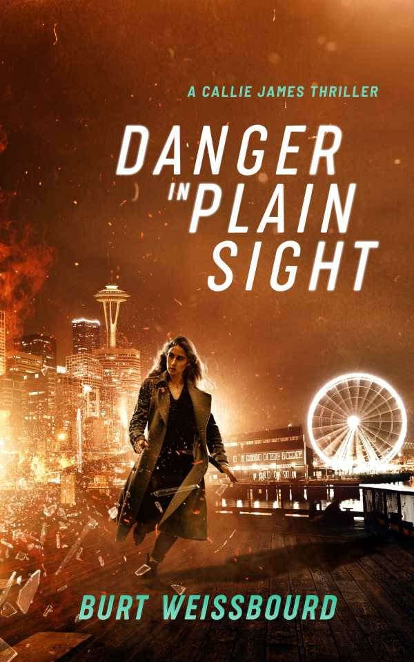 Danger in Plain Sight by Burt Weissbourd