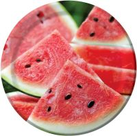 Summer Seeds Watermelon 9-inch Paper Plates: Party at ...