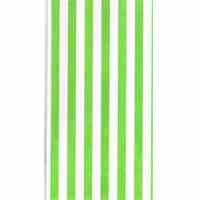 Green-Stripe-Paper-Bag