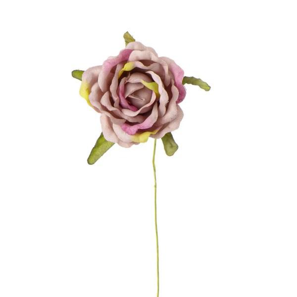Rosellina bomboniera rosa antico