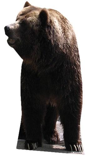 Grizzly Bear Lifesize Cardboard Cutout  Partyramacouk