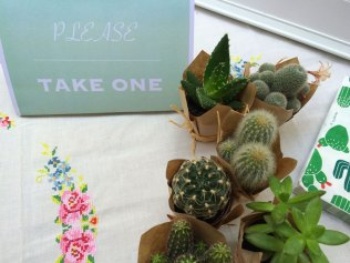 take-one-2-cactus-partytude