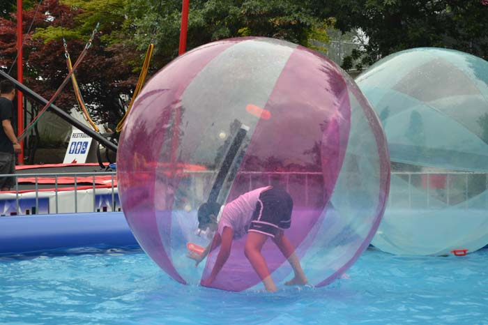 Human Bubble  Los Angeles PartyWorks Inc  Equipment