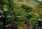 Paseo de la Filosofía Kioto
