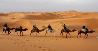 Vacunas para Marruecos