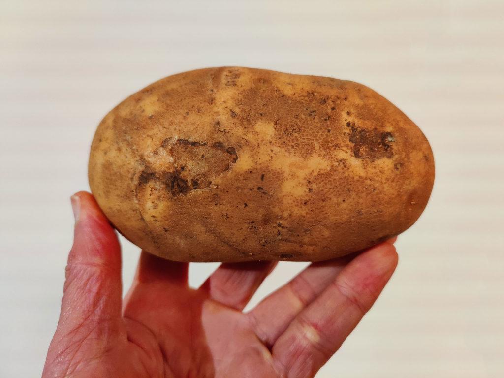patate pomme de terre