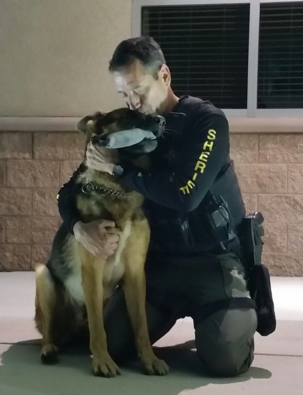 20+ Pasco County Sheriff K9 Pictures and Ideas on Meta Networks