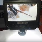 Микроскоп для Пчеломаток ИО - фото и видео под электронным usb микроскопом