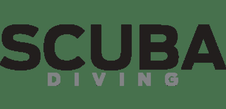 SCUBA DIVING, 10 Stunning Jellyfish • Pasquale Vassallo