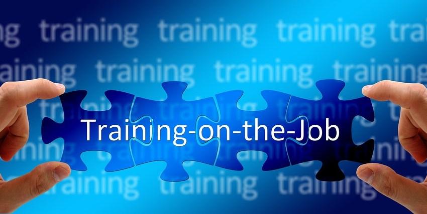 training 1848682 960 720 - Qual é o novo paradigma de Profissional?