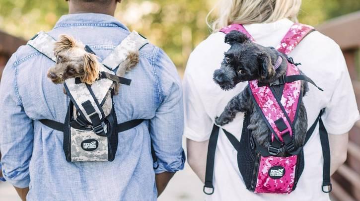 nouvelle sélection choisir le plus récent une grande variété de modèles Miglior trasportino per cani taglia piccola, media e grande