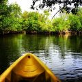 Oleta River State Park Kayaking