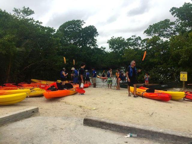 Oleta River State Park Kayaking