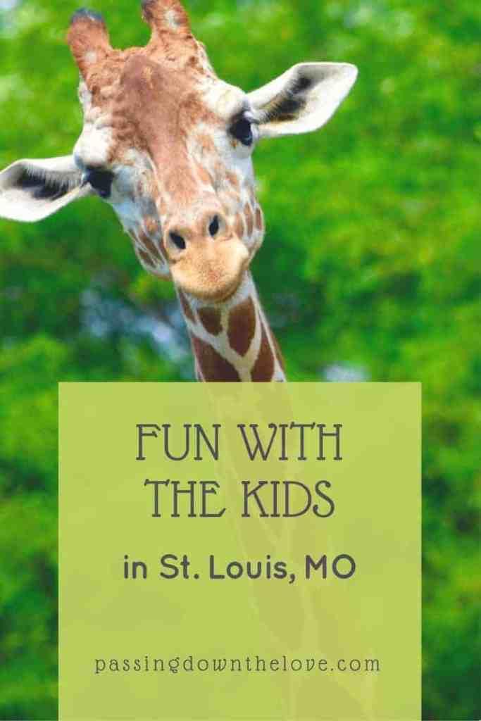 Kid-friendly fun in St. Louis, MO