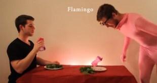 Comment se nourrissent les animaux, la parodie vidéo
