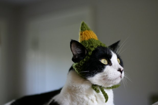 Chapeau d'elfe