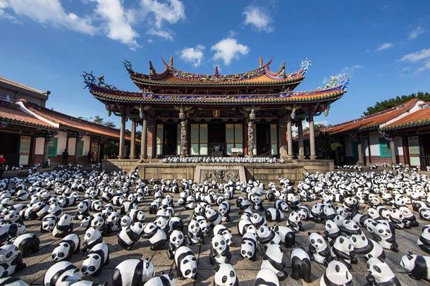 1600-Panda-10