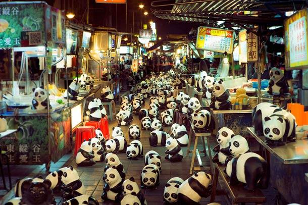 1600-Panda-4