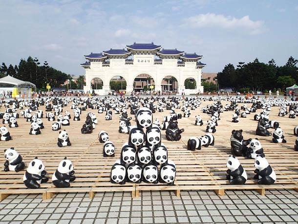 1600-Panda-6