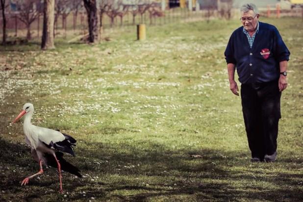 Slavonski Brod, 17.03.2015 - Klepetan je ove godine svojoj Malenoj dosao tjedan dana ranije nego obicno